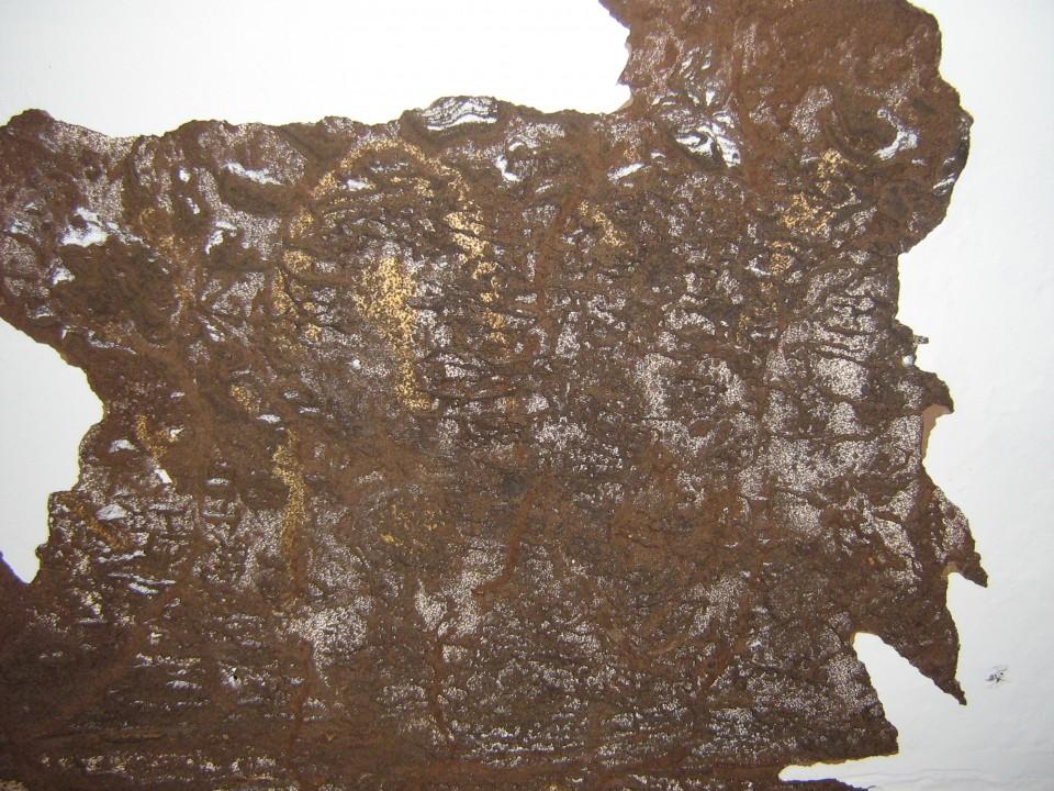 Termite-Damage-960x600